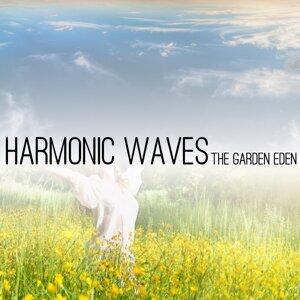 Harmonic Waves 歌手頭像