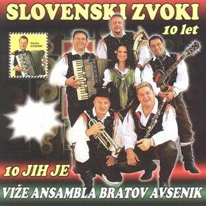 Ansambel Slovenski Zvoki 歌手頭像