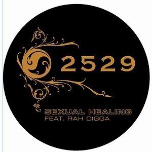 2529 feat. Rah Digga 歌手頭像