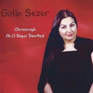 Gülin Sezer 歌手頭像