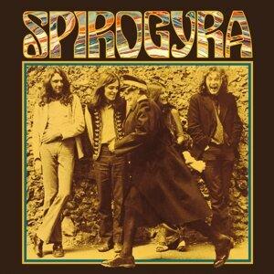 Spirogyra