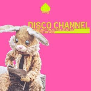 Disco Channel 歌手頭像