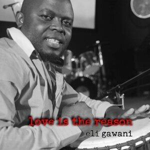 Elwins Gawani 歌手頭像