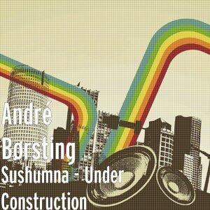 André Børsting & Sushumna 歌手頭像