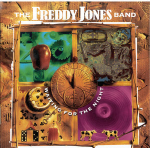 The Freddy Jones Band 歌手頭像
