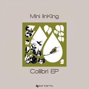 Mini linKing