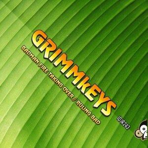 GRIMMkEYS 歌手頭像