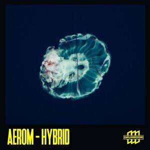 Aerom 歌手頭像