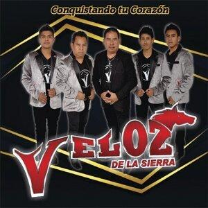 Veloz De La Sierra 歌手頭像