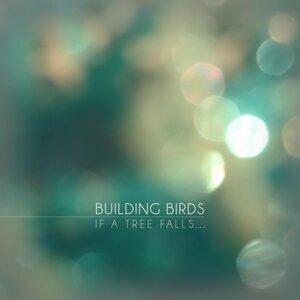 Building Birds 歌手頭像