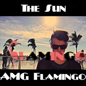 Amg Flamingo 歌手頭像