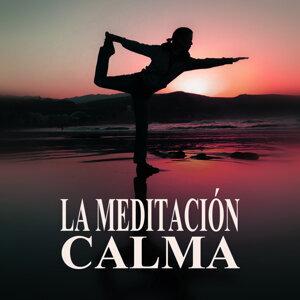 Técnicas de Meditación Academia 歌手頭像