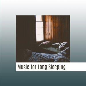 Peaceful Sleep Music Collection 歌手頭像