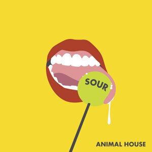 Animal House 歌手頭像