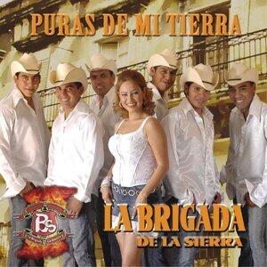 La Brigada De La Sierra 歌手頭像