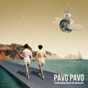 Pavo Pavo 歌手頭像