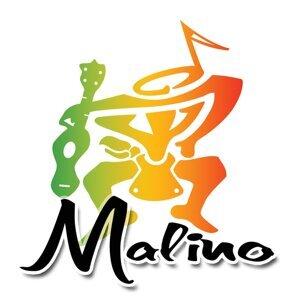Malino 歌手頭像