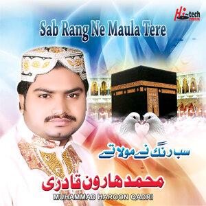 Muhammad Haroon Qadri 歌手頭像