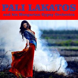 Pali Lakatos en Orkest 歌手頭像