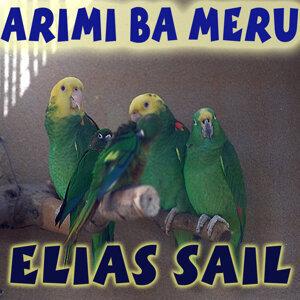 Elias Sail 歌手頭像