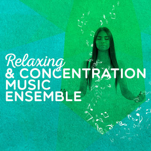 Concentration Music Ensemble|Fur Elise|Musica Relajante 歌手頭像