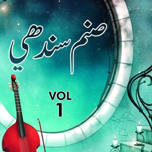 Sanam Sindhi 歌手頭像