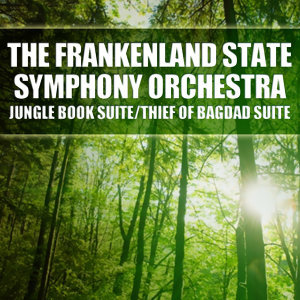 The Frankenland State Symphony Orchestra 歌手頭像