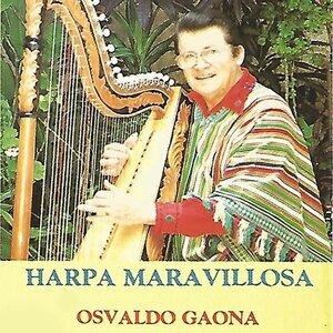 Osvaldo Gaona 歌手頭像
