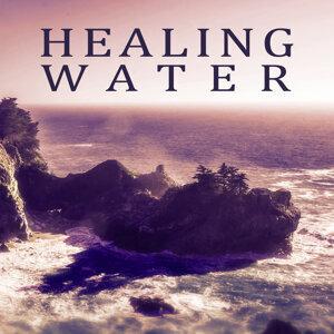 Healing Meditation Zone 歌手頭像