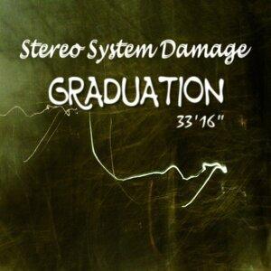 Stereo System Damage アーティスト写真