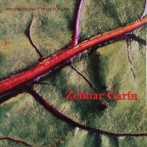 Zelmar Garín 歌手頭像