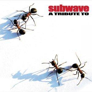 Subwave 歌手頭像