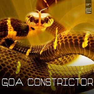 Goa Constrictor, Vol. 04 歌手頭像