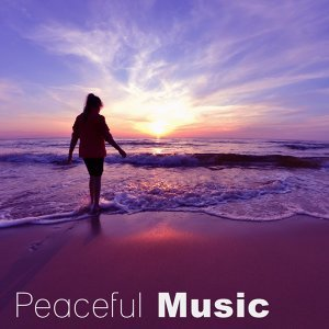 Antistress Music Collection 歌手頭像