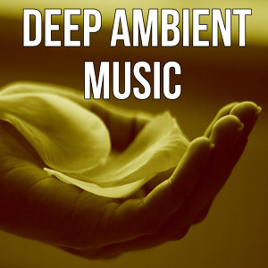 Ambient Sounds Collection 歌手頭像