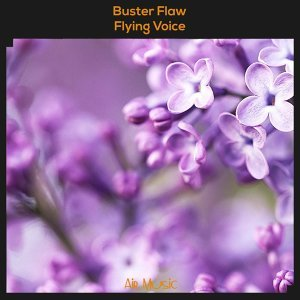 Buster Flaw 歌手頭像