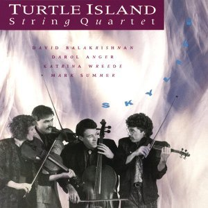 Turtle Island String Quartett