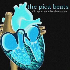 The Pica Beats 歌手頭像