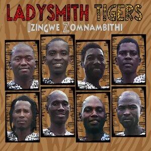 Izingwe Zomnambithi 歌手頭像