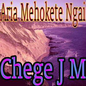 Chege J M 歌手頭像