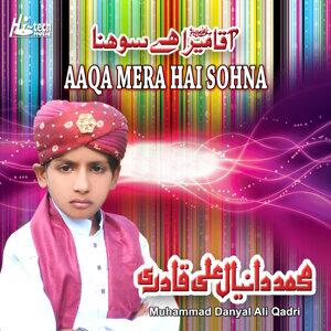 Muhammad Danyal Ali Qadri 歌手頭像