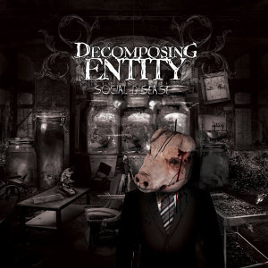 Decomposing Entity