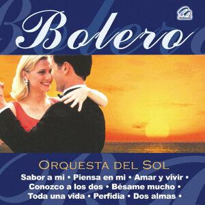 Orquesta Del Sol 歌手頭像