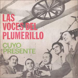 Las Voces del Plumerillo 歌手頭像