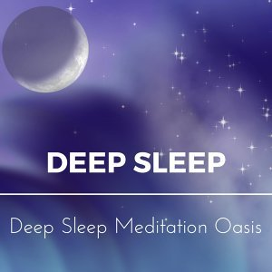 Deep Sleep Meditation Oasis 歌手頭像
