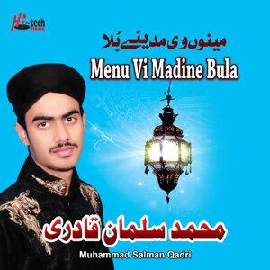 Muhammad Salman Qadri 歌手頭像