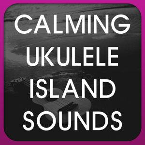 Calming Ukulele Island Sounds 歌手頭像