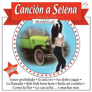 Araceli Y La Furia Grupera 歌手頭像