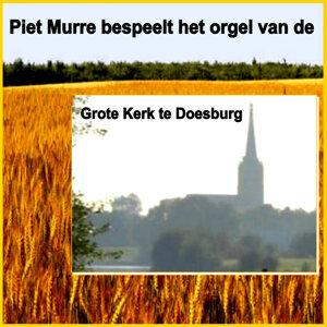 Piet Murre 歌手頭像