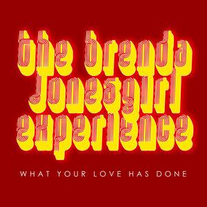 The Brenda JonesGirl Experience 歌手頭像